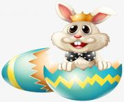 eggs rabbit cute png
