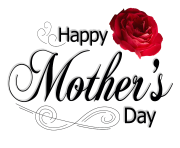 Mothers Day PNG Pic Rose