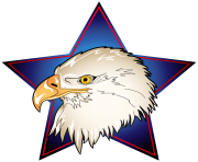 Eagle Head in Blue Star Transparent PNG Clip Art Image
