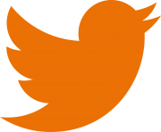 twitter logo png orange