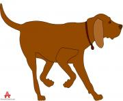dog animal clipart