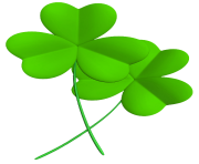 Transparent Shamrocks PNG Clipart Picture