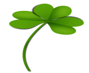Shamrock Clover PNG Picture