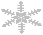 gray white snowflake png transparent 8