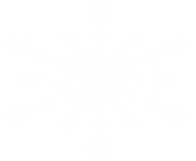white snowflake png ice crystal 5