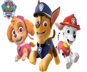 paw patrol all character png kids 7