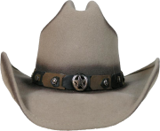Grey cowboy hat with black star belt