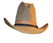 cowboy hat with black rope
